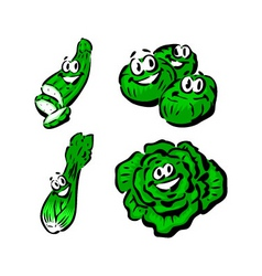 cucumber brussels sprouts celery lettuce vector image vector image
