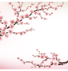 flowering branch of Sakura EPS 10 vector image