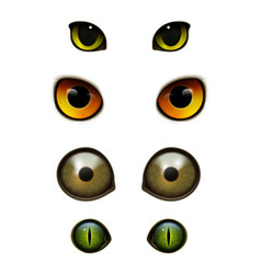 monster animals cats realistic eyes vector image vector image