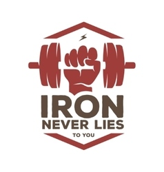 Iron never lies to you motivational poster or t vector image vector image