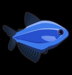 blue fish on black background vector image