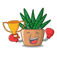 Boxing winner cartoon zebra cactus plant at park vector