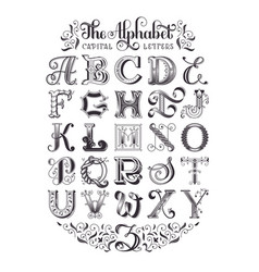 Decorative alphabet typographic poster vector