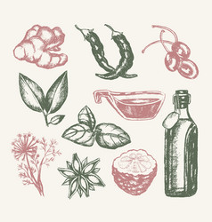Flavoured products - of drawn vintage vector