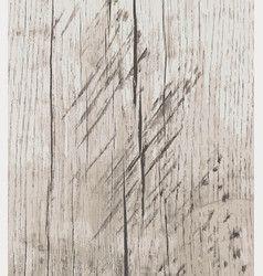 grunge wood texture background vector image