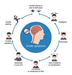 Infographics for stroke infographics for stroke vector