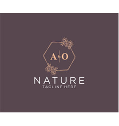 Initial ao letters floral frames botanical vector