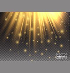 Lighting effect golden lights enhance your vector