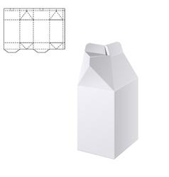 Milk or juice craft Box A vector image