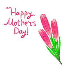 world mothers day bouquet of pink tulips vector image
