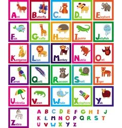 cartoon alphabet with funny animals vector image