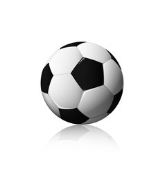football isolated on white background soccer vector image