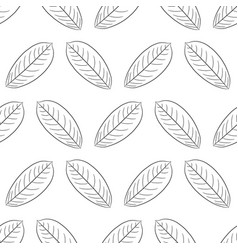 seamless pattern from leaf of plant from the vector image vector image