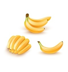 Set of isolated banana fruits vector image vector image