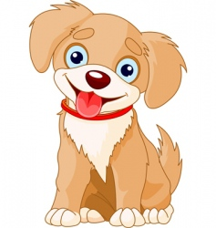 cute puppy vector image