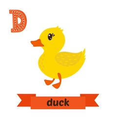 Duck D letter Cute children animal alphabet in vector image