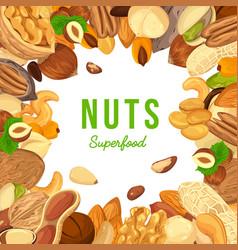 Kernels of nuts for badge or banner vector