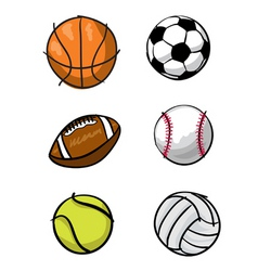 kids sports balls vector image