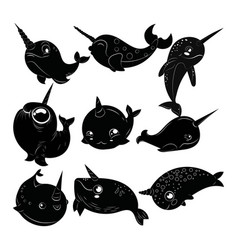 set cartoon narwhals collection black vector image