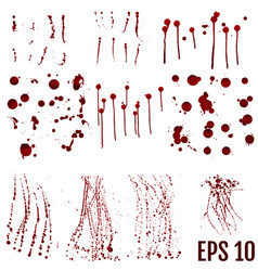 set of realistic bloody splatters drop and blob vector image
