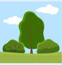 Summer trees and blooming bush collection bushes vector