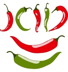 Chili peppers red and green vector image