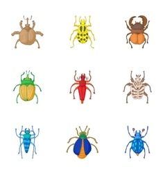Types of bugs icons set cartoon style vector image