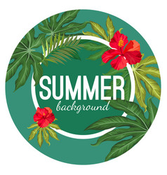 summer background with tropical leaves and flower vector image vector image