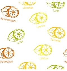Citrus seamless pattern background vector image