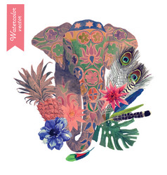 watercolor of indian elephant head vector image vector image