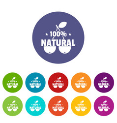 100 percent natural icons set color vector image