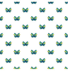 Butterfly papilio zagreus pattern seamless vector