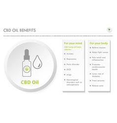 Cbd oil benefits horizontal business infographic vector