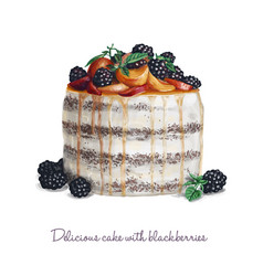 Delicious cake with blackberries vector
