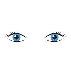 Pair of blue eyes vector image