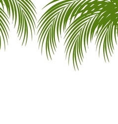 Palm leaf silhouettes background tropical leaves vector