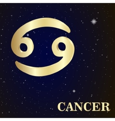 Sign of the zodiac Cancer is the starry sky vector image