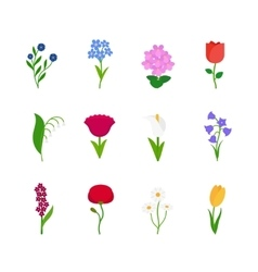 Spring flowers icons vector