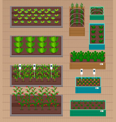 Urban farming gardening or agriculture sprouts vector