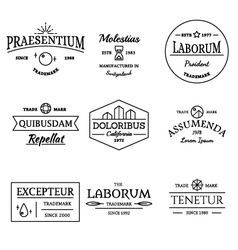 Vintage and retro style logos and labels set vector image