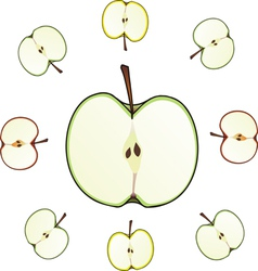 Apple cut vector