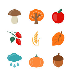 autumn flat icons vector image