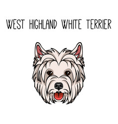 Dog west highland white terrier face icon vector