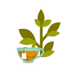 green leaf and a tea cup vector image