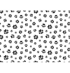 pet paw pattern animal background with god cat vector image