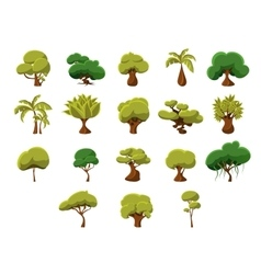 Tropical Trees Collection vector image