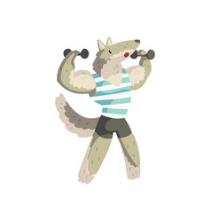 Wolf exercising with dumbbells wearing sports vector