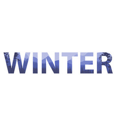 winter words on the beautiful chrismas flat vector image