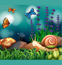 Background scene with snails and butterfly vector