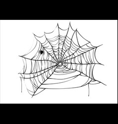 Halloween spiderweb with spider isolated vector